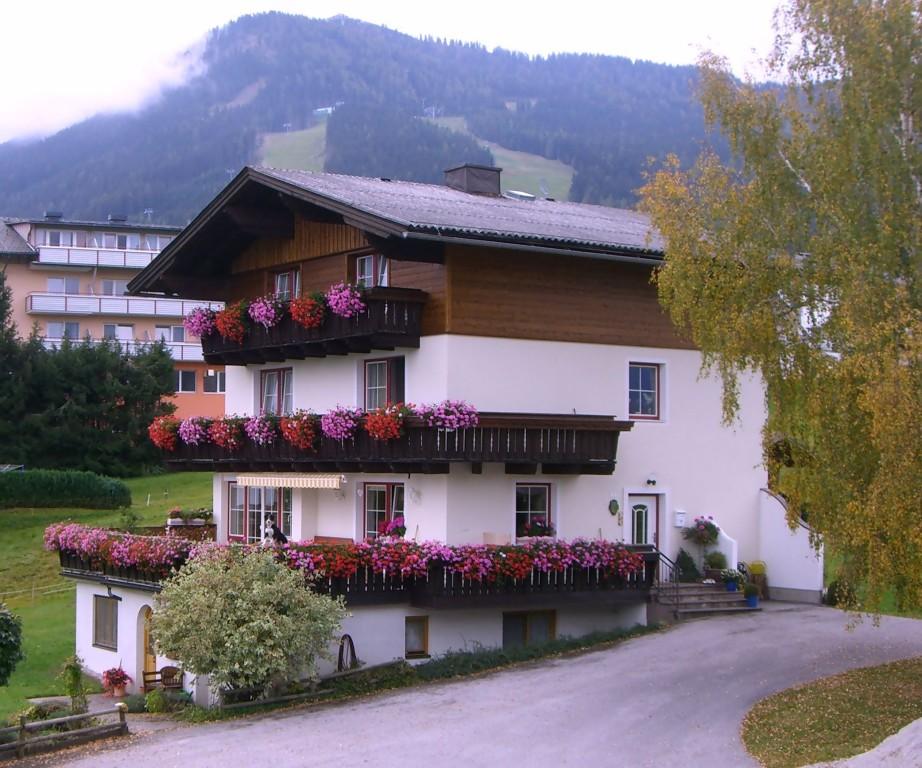 Haus Erika Rohrmoos Lage und Umgebung